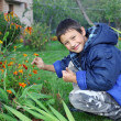 Little boy with flowers outdoors — Stock Photo