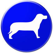Dogs sign — Stock Photo