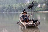 YANGSHUO : Chinese man fishing with cormorants birds — Stock Photo
