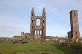 Motivi cattedrale di st andrews, scozia, regno unito — Foto Stock