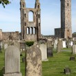 St. Andrews cathedral grounds — Stock Photo
