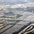 Aerial view to Rice fields, south China — Stock Photo