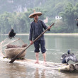 YANGSHUO - JUNE 18: Chinese man fishing with cormorants birds   — Stock Photo