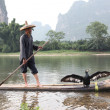 YANGSHUO - JUNE 18: Chinese man fishing with cormorants birds — ストック写真