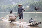 陽朔 - 6 月 18 日: 中国人男性鵜鳥と魚釣り — ストック写真
