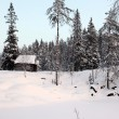 Alone home in Winter forest — Stockfoto
