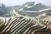 Longji rice terraces, Guangxi province, China — Foto de Stock