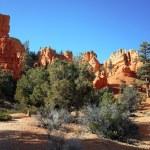 Bryce Canyon Hoodoos, Utah, USA — Stock Photo #38764097