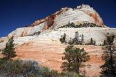 Zion National Park, Utah, USA — Stock Photo