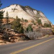 Road in the USA, Zion NP, USA — Stock Photo