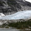 Norway, Jostedalsbreen National Park — Stock Photo #40218765