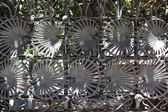 Metal decoration of a gate in Barcelona — Stock Photo