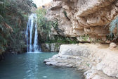 Waterfall in national park Ein Gedi — Stock Photo