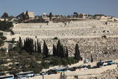 Мiew of the old city Holy Land — Stock Photo