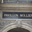 Pavillon Mollien — Stock Photo #42180595