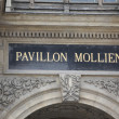 Pavillon Mollien — Stock Photo
