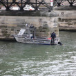 Постер, плакат: Boat on Seine River