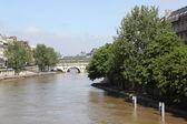 Seine river and Bridge in Paris, France — Fotografia Stock