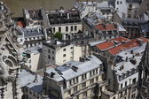 View from top of Notre Dame Cathedral — Стоковое фото