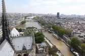 View from top of Notre Dame Cathedral — Stock Photo
