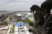 Stone gargoyle on top of Notre Dame Cathedral — Zdjęcie stockowe