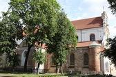 Church of Vilnius — Foto Stock