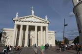 Vilnius katedrali — Stok fotoğraf