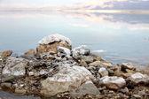 Mrtvé moře — Stock fotografie