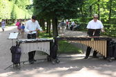 Band playing on marimba, xylophone — Stok fotoğraf