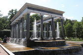 Fountains in Petergof park — Stock Photo