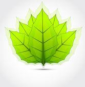 Sfondo con foglie verdi — Vettoriale Stock