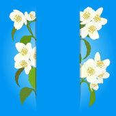 Vector cartão com flor de cerejeira. — Vetor de Stock