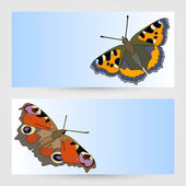 Vector templates graphic designs with butterfly. — Stockvector