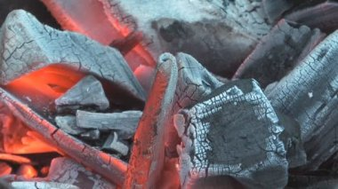 древесный уголь. — Стоковое видео