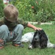 Boy and spaniel. — Stock Video #40210813