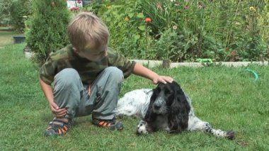 Boy and spaniel. — Video Stock