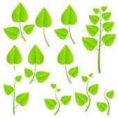 Green plants set — Stock Vector