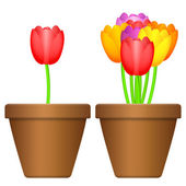 Flowerpot and tulips — Vector de stock