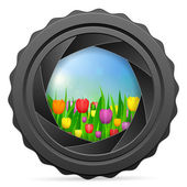 Camera shutter with tulips — Stock Vector