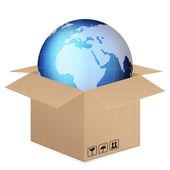 World globe in box — Stock Vector