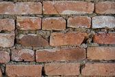 Brick wall 2 — Stockfoto