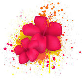 Hibiscus flowers on grunge background — Stock Vector