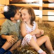 Children on Hayloft — Stock Photo #18979239
