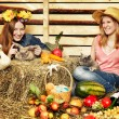 Stock Photo: Harvest Home
