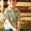 Stock Photo: Boy on Hayloft