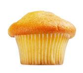 Cytryny muffin — Zdjęcie stockowe