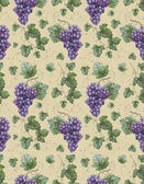 Seamless pattern with watercolor illustration of grapes with lea — Stock Photo