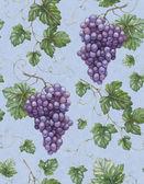 Padrão sem emenda com aquarela ilustração de uvas com lea — Foto Stock