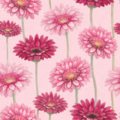 Watercolor gerber flowers. Seamless pattern — Stock Photo
