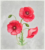 Watercolor illustration of poppy flower. Perfect for greeting card — Stock Photo